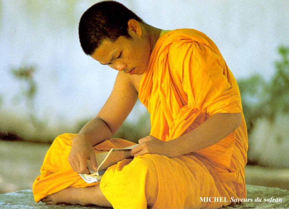 Moine-bouddhiste-safran.jpg